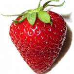 Strawberies To Lose Weight
