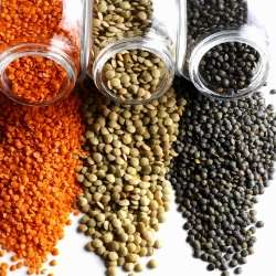 Different types of lentils for weight loss