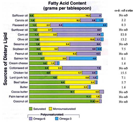 fatty acid content in oils