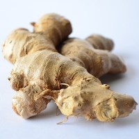 ginger-for-losing-weight
