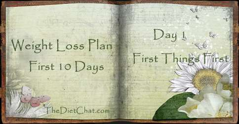 weight loss plan day 1