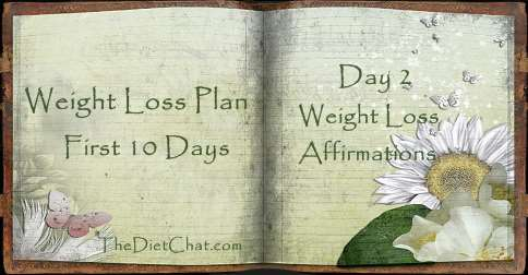 weight loss plan day 2