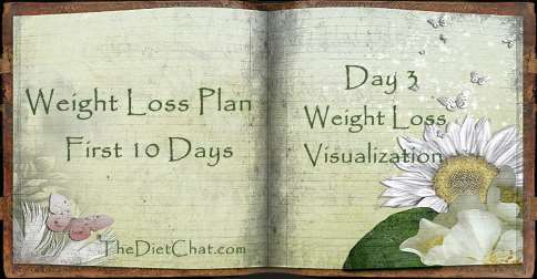 weight loss visualization