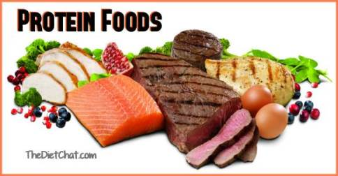 protein foods for weight loss